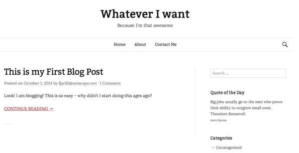 image of page with newly installed plugin